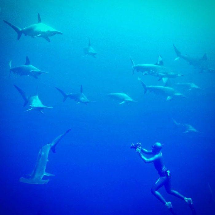 cousteau-divers